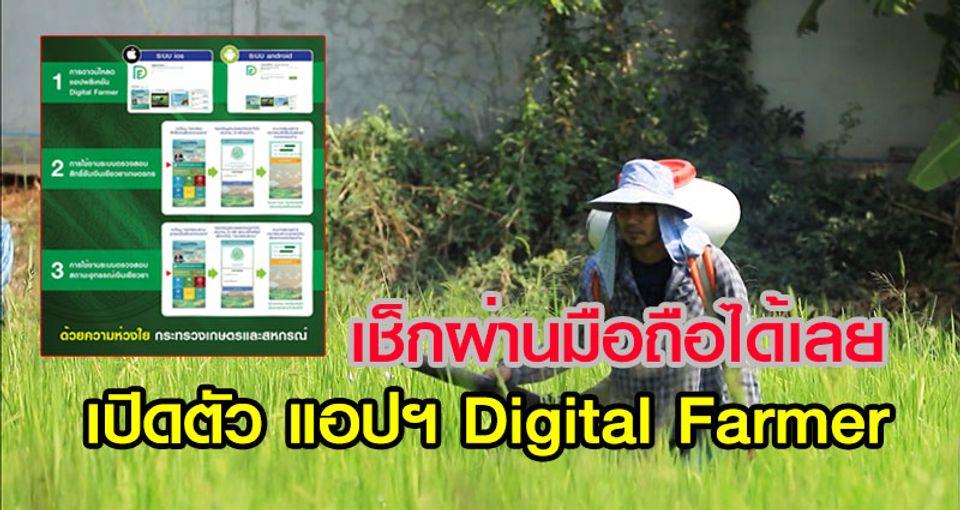 ตรวจสอบสิทธิ์เยียวยาเกษตรกร เปิดตัว แอปพลิเคชัน Digital Farmer เช็กผ่านมือถือได้เลย
