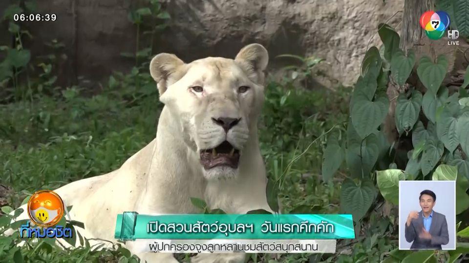 เปิดสวนสัตว์อุบลฯ วันแรกคึกคัก ผู้ปกครองจูงลูกหลานชมสัตว์สนุกสนาน