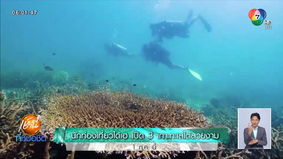 นักท่องเที่ยวได้เฮ เปิด 3 เกาะทะเลใต้ เกาะสมุย-เกาะพะงัน-เกาะเต่า 1 ก.ค.นี้