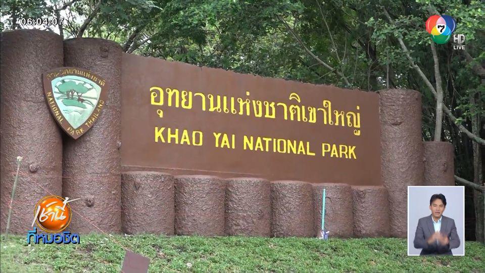 1 ก.ค.นี้ เปิดอุทยานแห่งชาติเขาใหญ่ จำกัดนักท่องเที่ยววันละ 5,000 คน