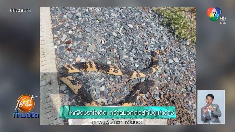 หญิงชราใจเด็ด คว้าฉมวกต่อสู้กับงูเห่าด่าง ถูกพ่นพิษใส่ตาหวิดบอด