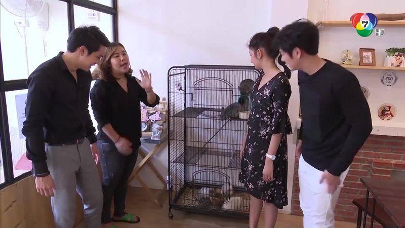 SPOTLIGHT ON TV นักแสดงหวานใจนายหุ่นยนต์ 14 ก.พ.61 2/4