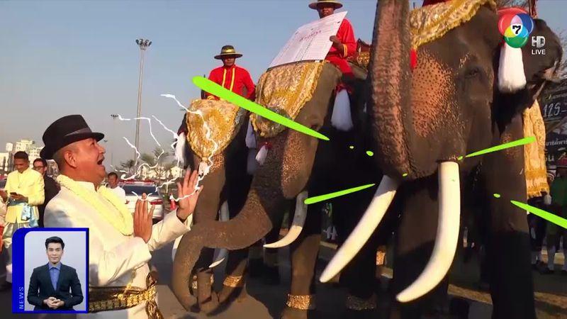 สะเก็ดข่าว : ช้างไม่ดื้อ