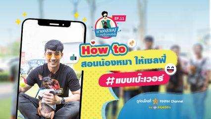 EP.11 ชายกล้ามปูกับหมูช็อคบอล | How to !! สอนน้องหมาให้เซลฟี่ แบบเป๊ะเวอร์