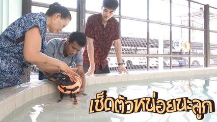 Special Uncut ชายกล้ามปูกับหมูช็อคบอล EP.6 | ภารกิจว่ายน้ำมาราธอน