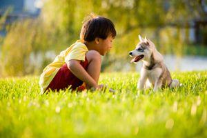คาถาป้องกันตัว ให้ปลอดภัยจากอันตรายจากคนหรือสัตว์