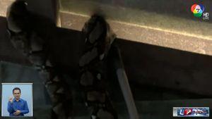 งูเนื้อคู่ บุกบ้านสาว 3 ครั้ง เดือดร้อนกู้ภัยต้องช่วยจับ